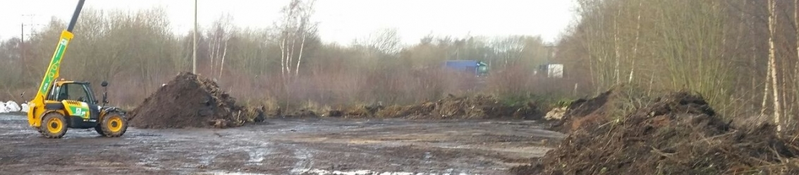 Japanese Knotweed Excavation and Removal