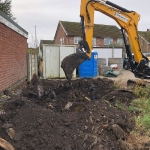 Excavation of Japanese Knotweed for a Construction Company